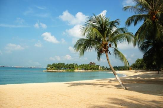 A beach in Singapore