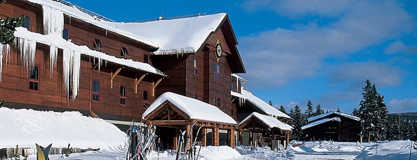 Snow Lodge with skier